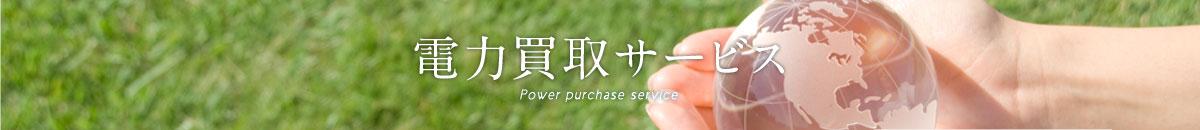 電力買取サービス Power purchase service